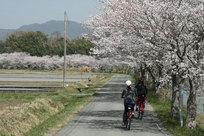 丹波篠山えこりんプロジェクト(レンタサイクル事業)