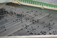 黒豆サイクリング
