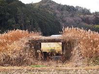 国鉄篠山線廃線跡サイクリング